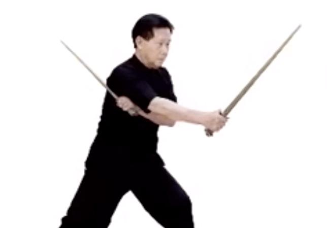 kungfu19