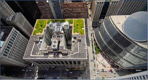 芝加哥市政廳綠色屋頂,旨在為都市降溫。