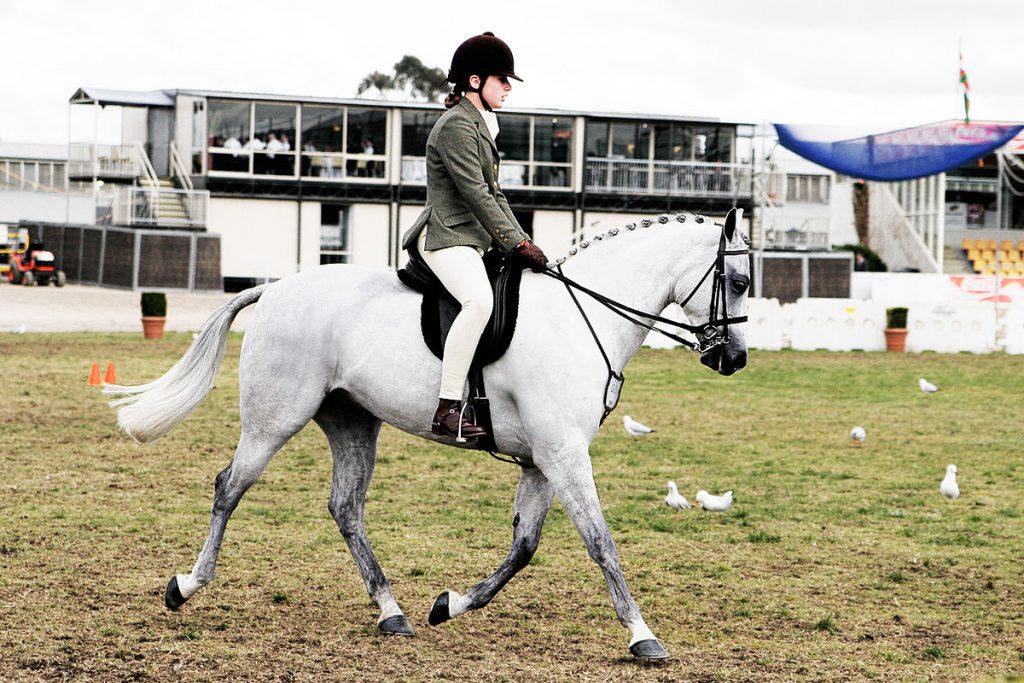 1200px-horse_riding_in_coca_cola_arena_-_melbourne_show_2005