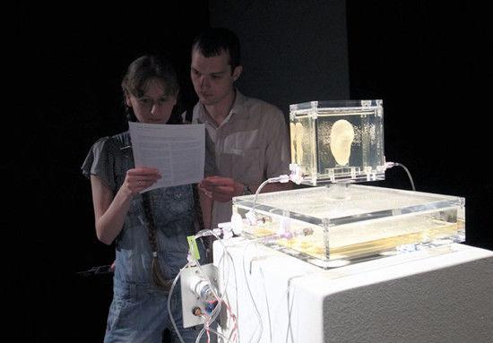 不少藝術研究者、藝術愛好者及歷史學家也為梵高的「左耳之迷」而瘋狂,美國就有一名藝術家根據梵高的自畫像,以3D打印技術重塑「梵高左耳」,並送往德國的一家美術館展出。