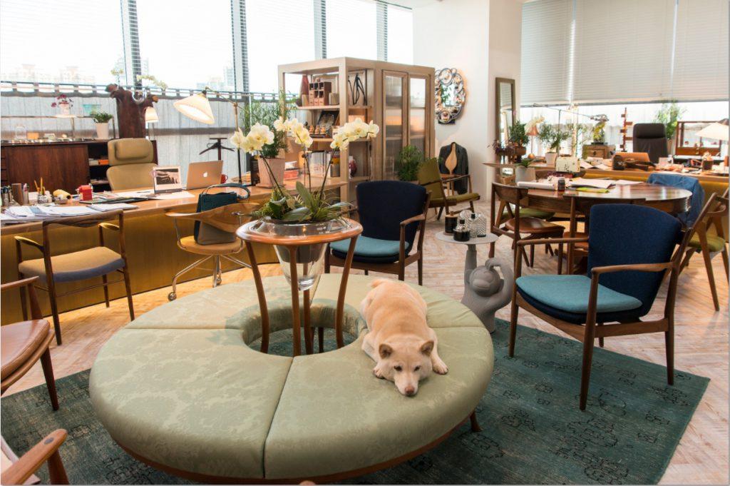 他們位於荔枝角的工作室美不勝收,他們共同撫養的柴犬阿福可隨意在一萬六千呎的辦公室內奔跑。