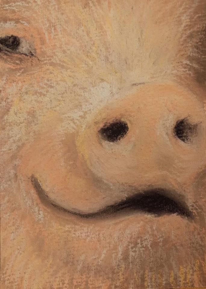 粉彩藝術家土撥鼠以石頭粉彩畫的作品