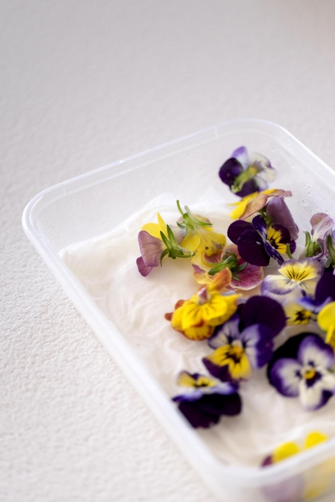 儲存食用花方法簡單,盒子裏墊上濕廚紙,鋪上花朵,加蓋冷藏即可保鮮。