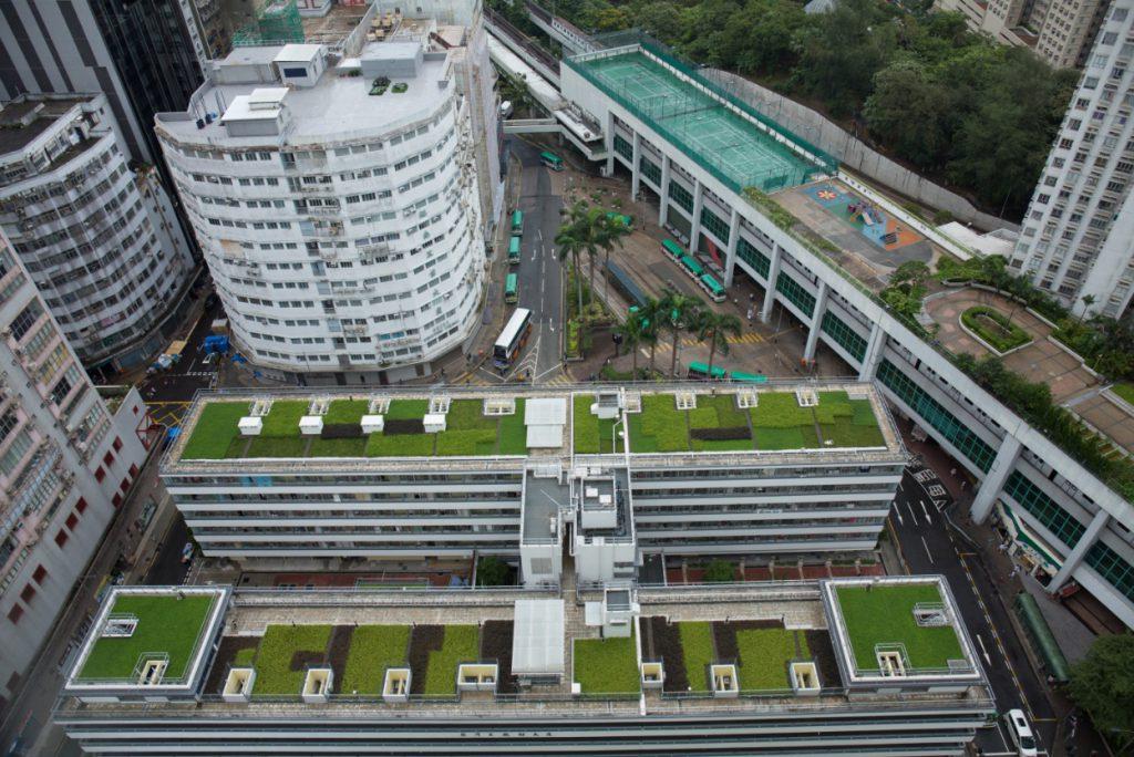 廈邨綠化天台鋪上植被,加設光井,綠化覆蓋率高達四成。