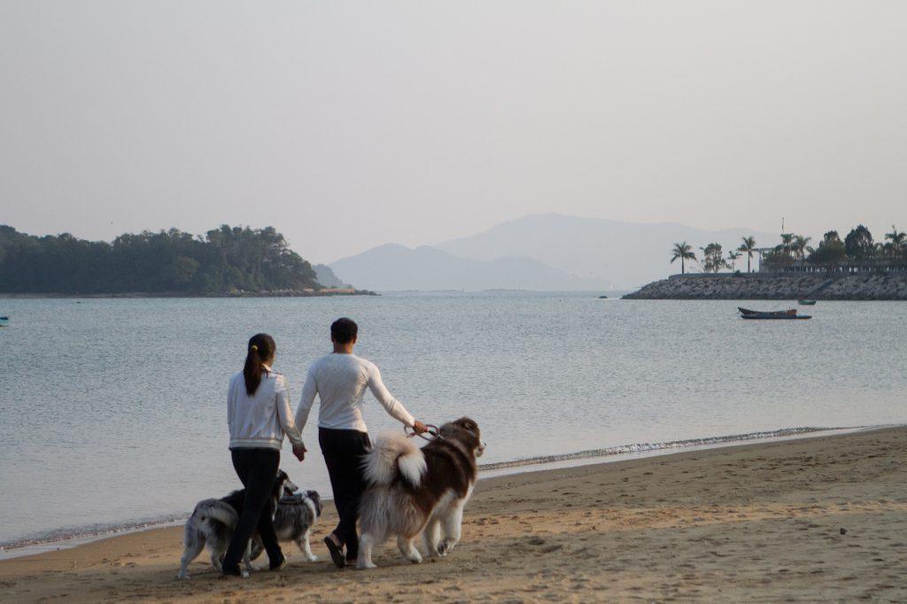 Samrat和Bianca平日大多獨自帶愛犬去散步,因為再帶一對仔仔的話,兩個人絕對照顧不來,因此更珍惜全家出動的機會。(Siuman攝)