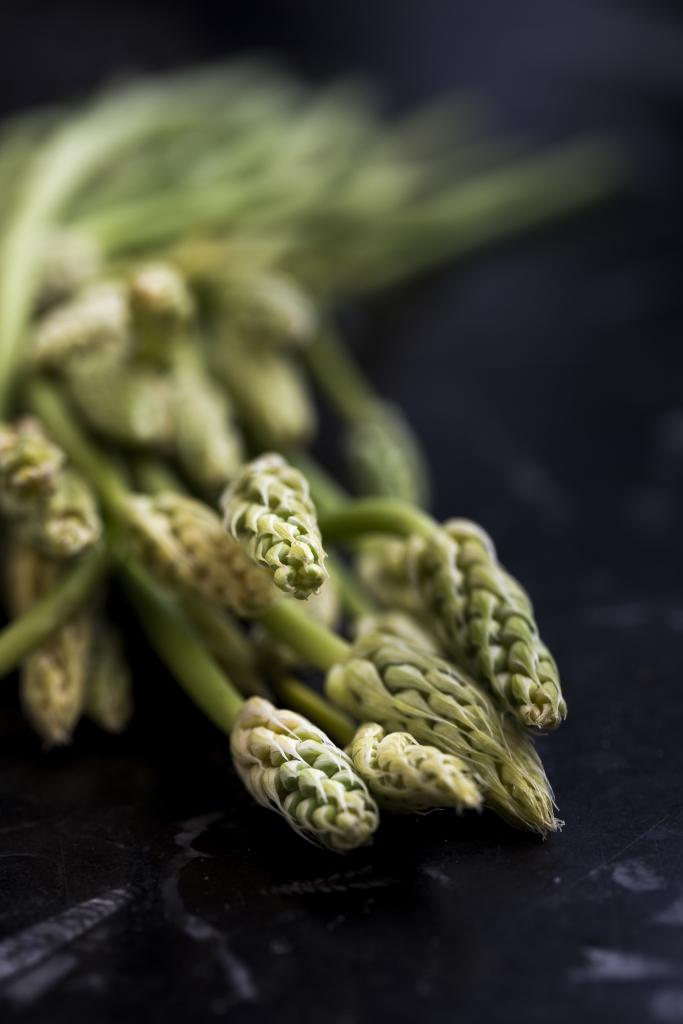 法國野生露筍每年限於7、8月出現市場,形態如稻穗般美麗。