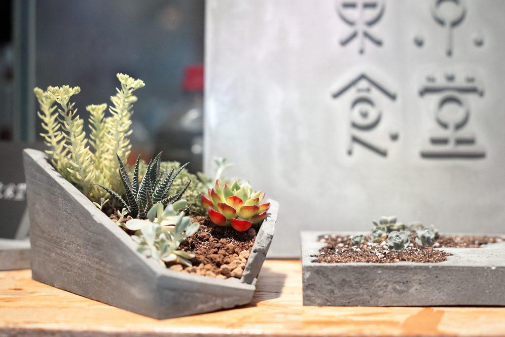 0005_tokyo-plant_portrait-160vc