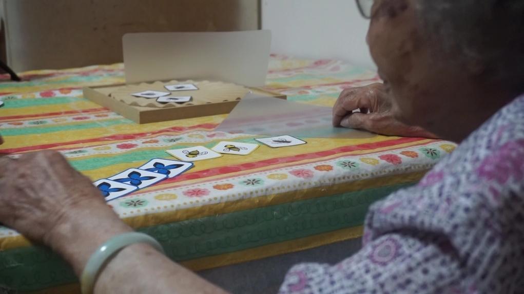 拍烏蠅遊戲,長者手執透明扇,把印有不同昆蟲圖案的卡片吹出木盤,再自行計算所得分數,訓練計算能力。