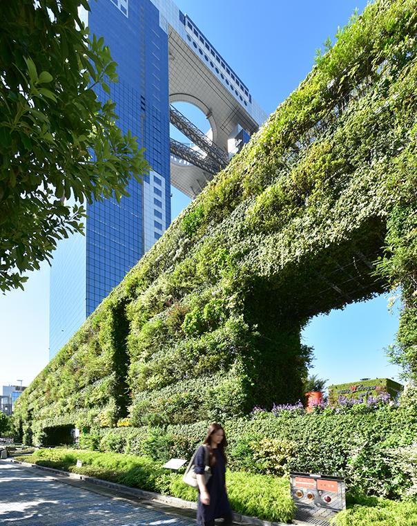 安藤忠雄一直致力於家鄉大阪的綠化工作,圖為2013年完成的希望之牆。
