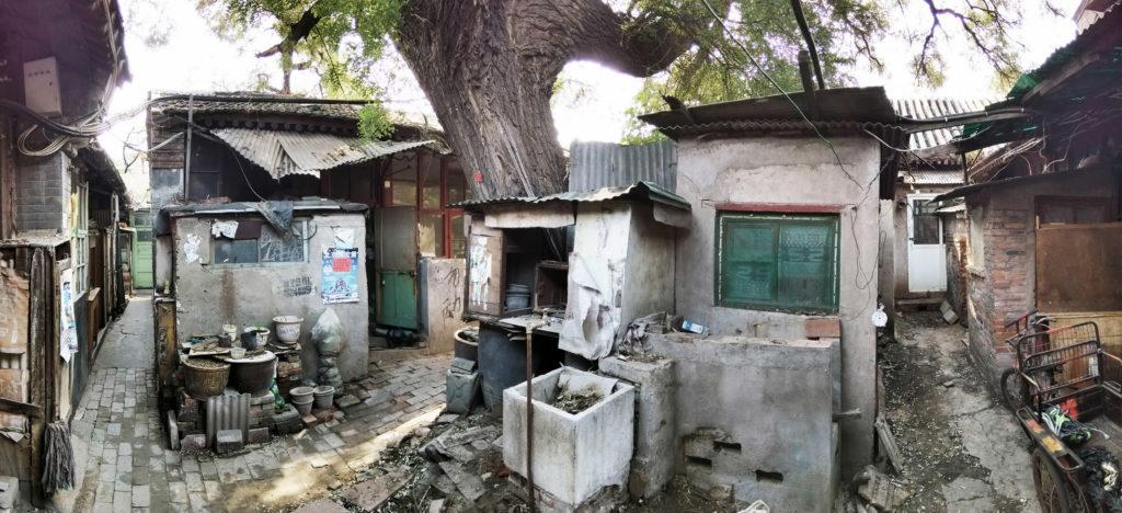 改造前的茶兒胡同8號,院子中古槐樹被多個由居民自行搭建的小廚房包圍,環境擁擠而混亂,是典型的「大雜院」。
