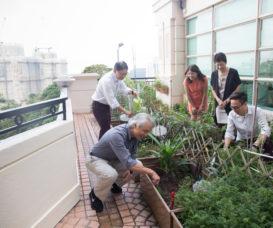 北角寶馬山花園業委會主席范維綱(左二)與居民積極參與推動環保活動,農圃蔬菜收成後更會與鄰居分享。