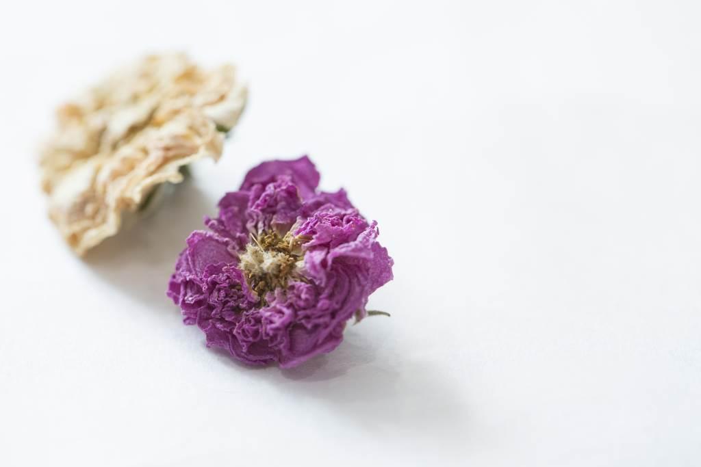 聽說大馬士革玫瑰在清晨5時,朵兒飽含露珠時原朵摘下最優品。 白玫瑰,香港較為少見,但據說它的花效最高,花香芳柔。