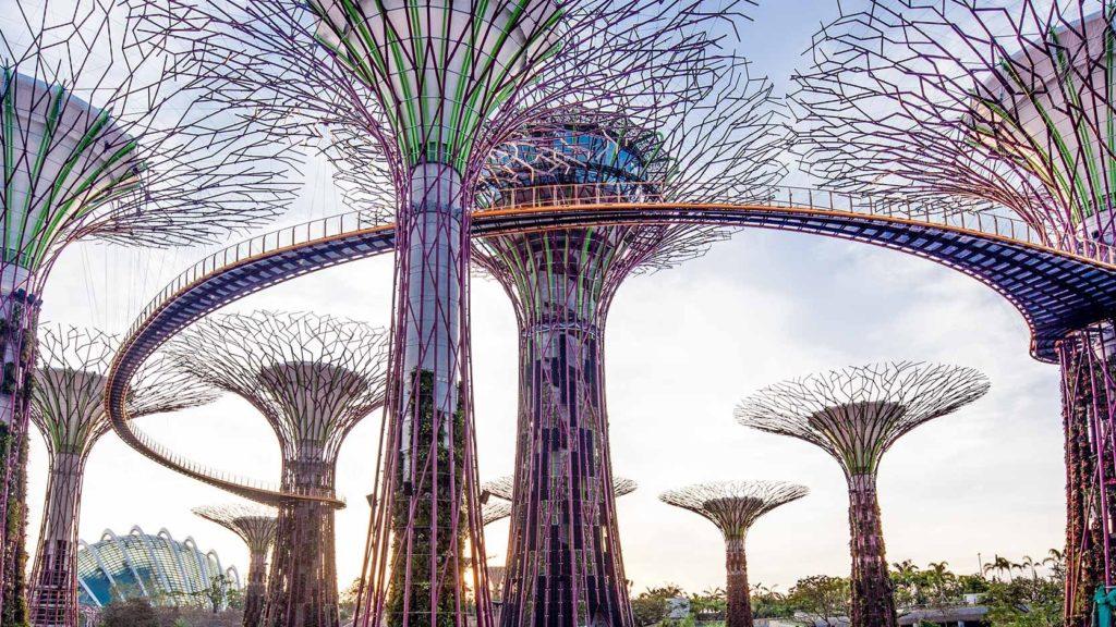 加坡十年間變成一個花園城市,綠色建築林立,每人不知的旅遊景點Supertree Grove亦可以很綠化。