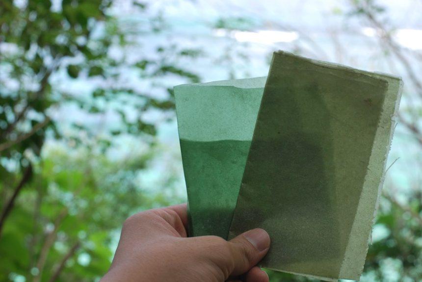 海藻紙可供食用,即使不吃,丟棄後也能自然分解。
