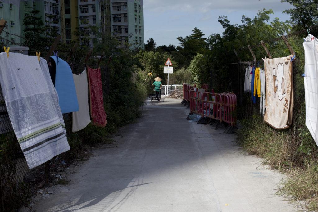 東涌社區發展陣線曾向地政總署申請雜草叢生的荒地辦墟市,事前會員花大量人力物力清理雜草。