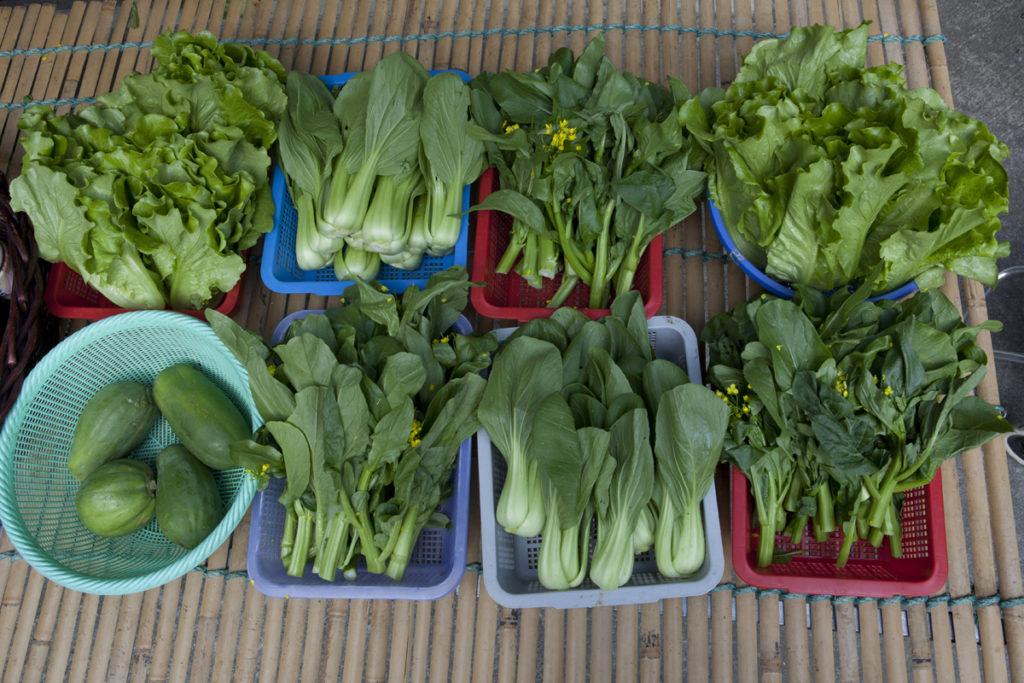 「天姿作圍」在天水圍輞井租農田種菜,周一至五早上送農作物到天秀墟擺賣。