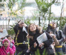 導賞團參加者學習使用望遠鏡,觀察樹上的雀鳥。