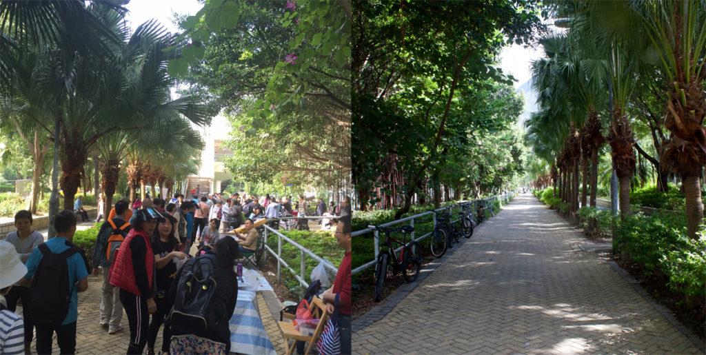 舟逸樓單車徑往年的地攤墟市遊人如鯽,街坊希望墟市再近民居一點,例如設在黎淑英廣場與金牛廣場。