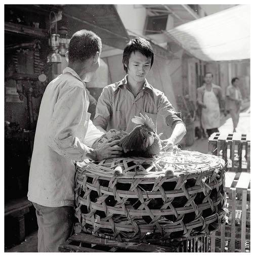 從前雞鴨鵝的買賣在街邊進行,現已不復見。(圖片由政府新聞處提供)