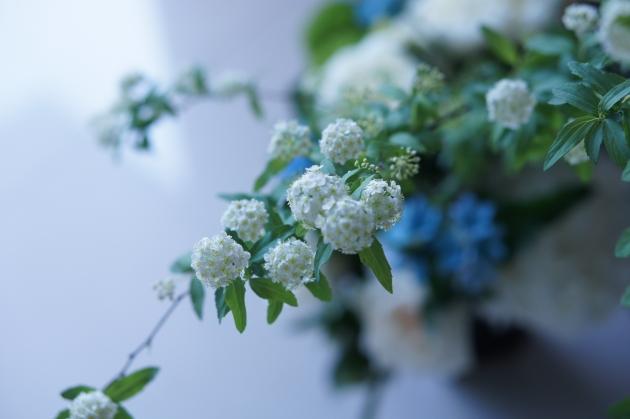 在弟弟Henry的告別禮上,Emily以麻葉繡線菊之美,代表弟弟純然的心。(圖片由受訪者提供)