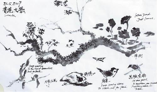 觀鳥也不單是純粹看鳥,而是看見季節也看見大自然;是與大自然接觸的一扇大窗。(插畫由受訪者提供)