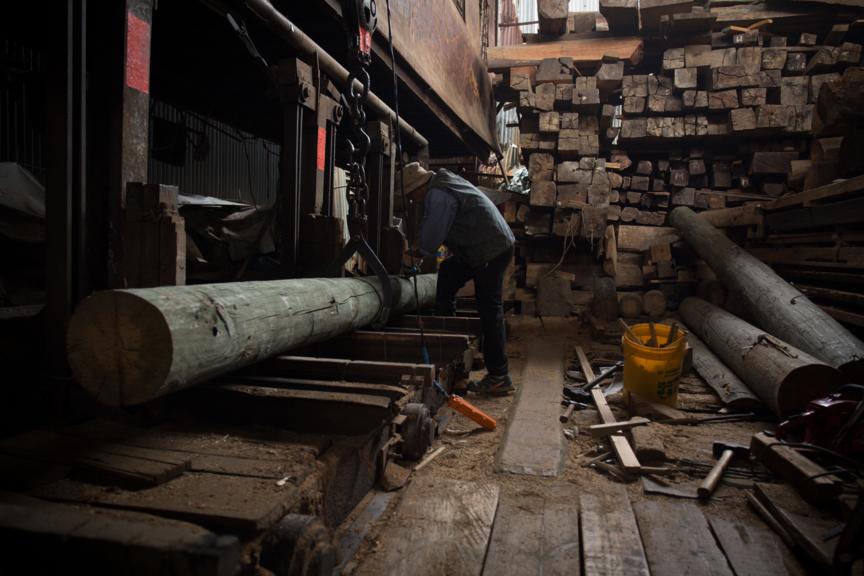 「皮帶鋸」專門用作鋸貴價木材,包括柚木。