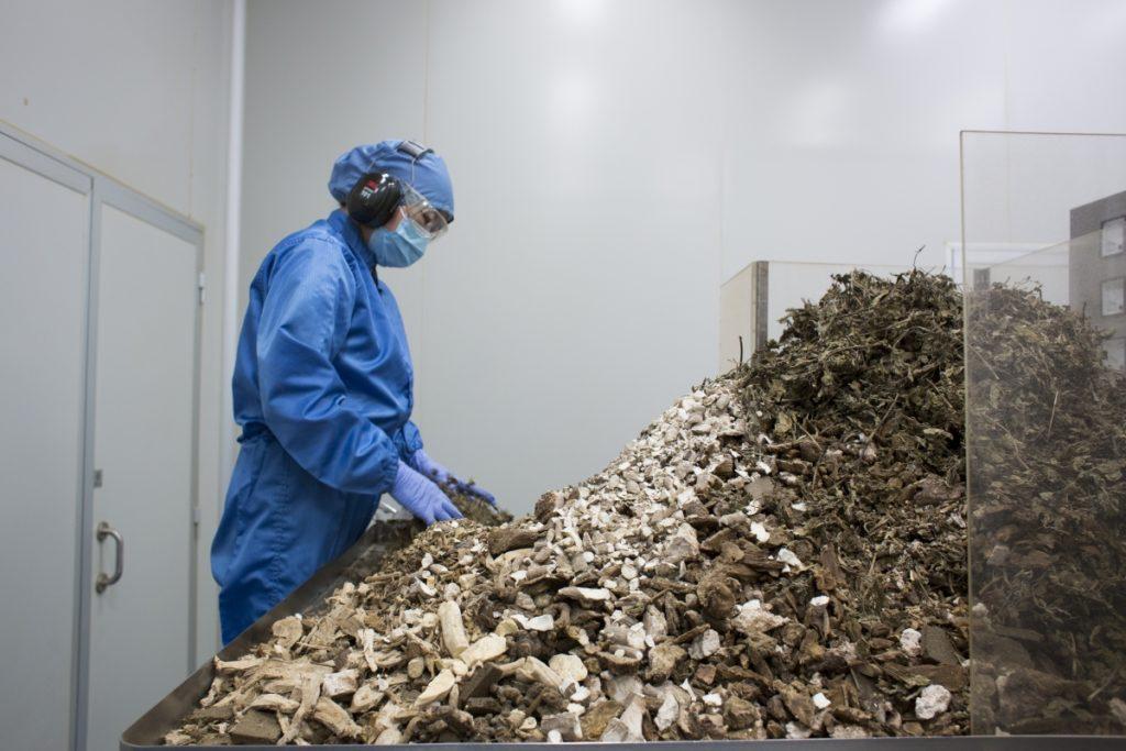 將主要藥材攪拌和碾碎工序