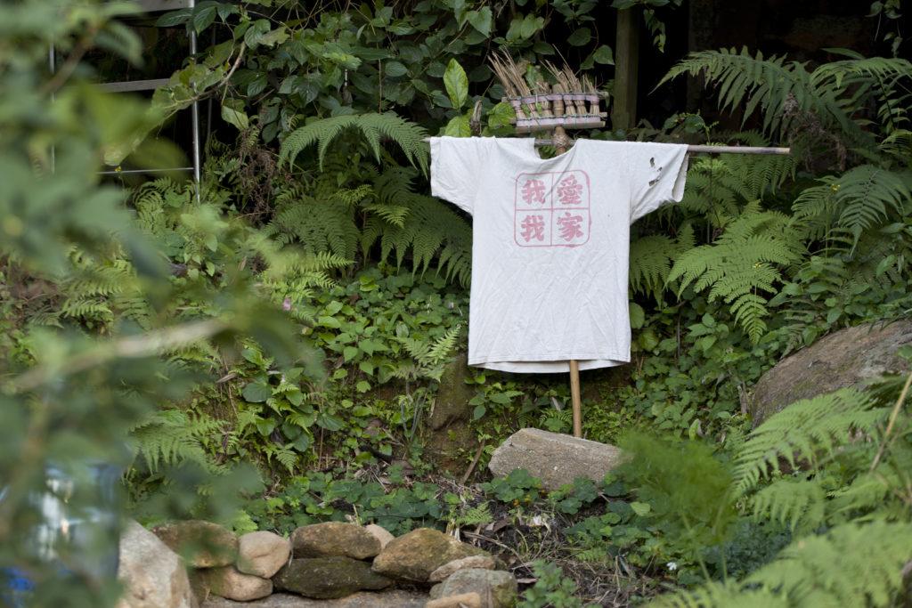 能在林村耕田,Sunny覺得很神奇。可是能長遠地在這裏做喜歡的事嗎?他不確定。
