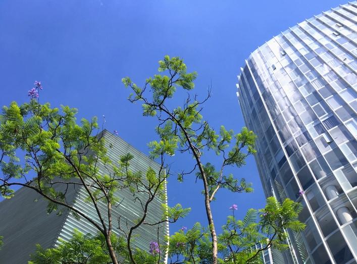 Polanco乃墨西哥城的新興發展區