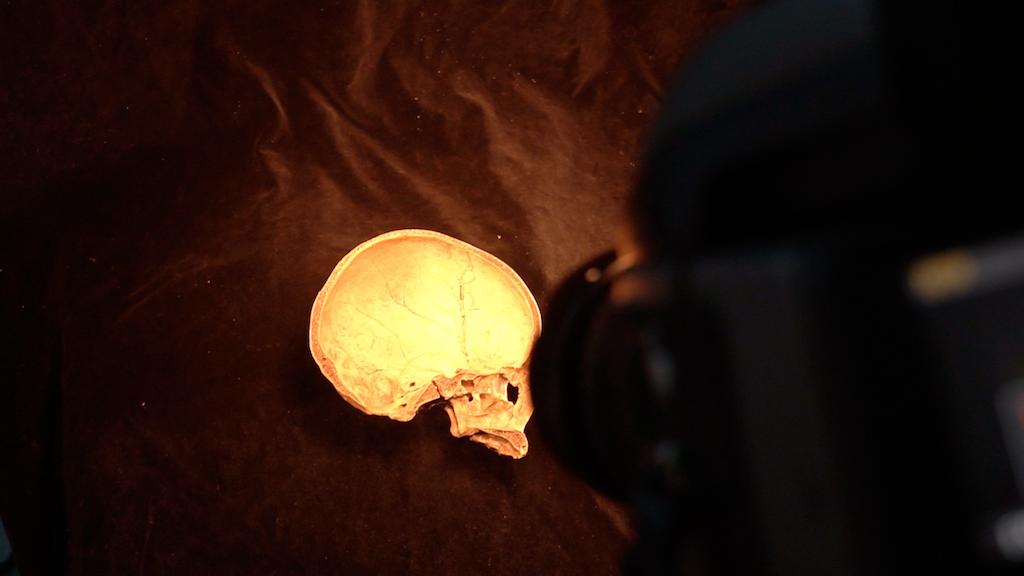 身體標本讓我們可以用不同角度了解自己的身體