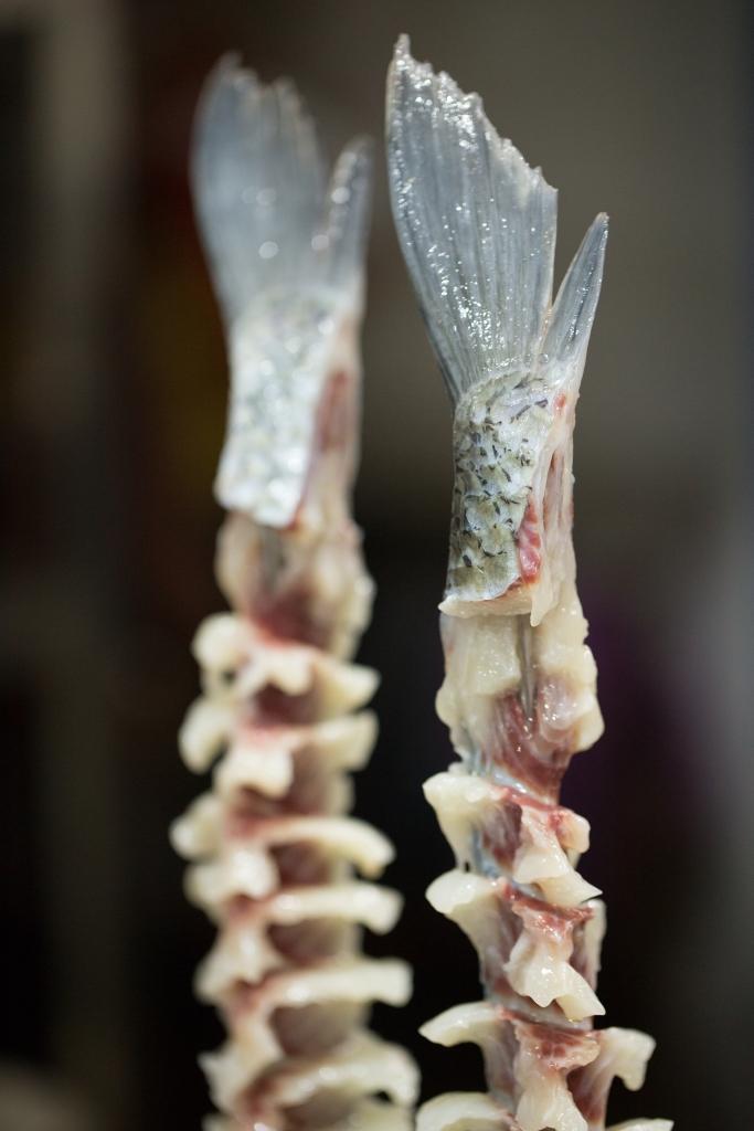 千層魚 // 用上一條鮮鯇魚製作,切得厚薄勻稱而不斷,甚考刀功。 (RMB128/b)