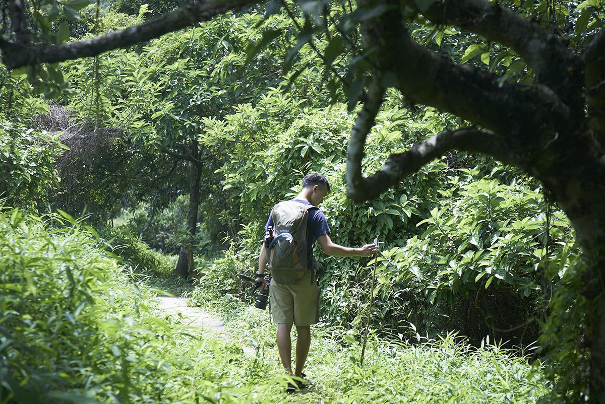 獨自穿梭森林,阿城毫不害怕,「拍攝動物都是驚喜,沒什麼驚險。」