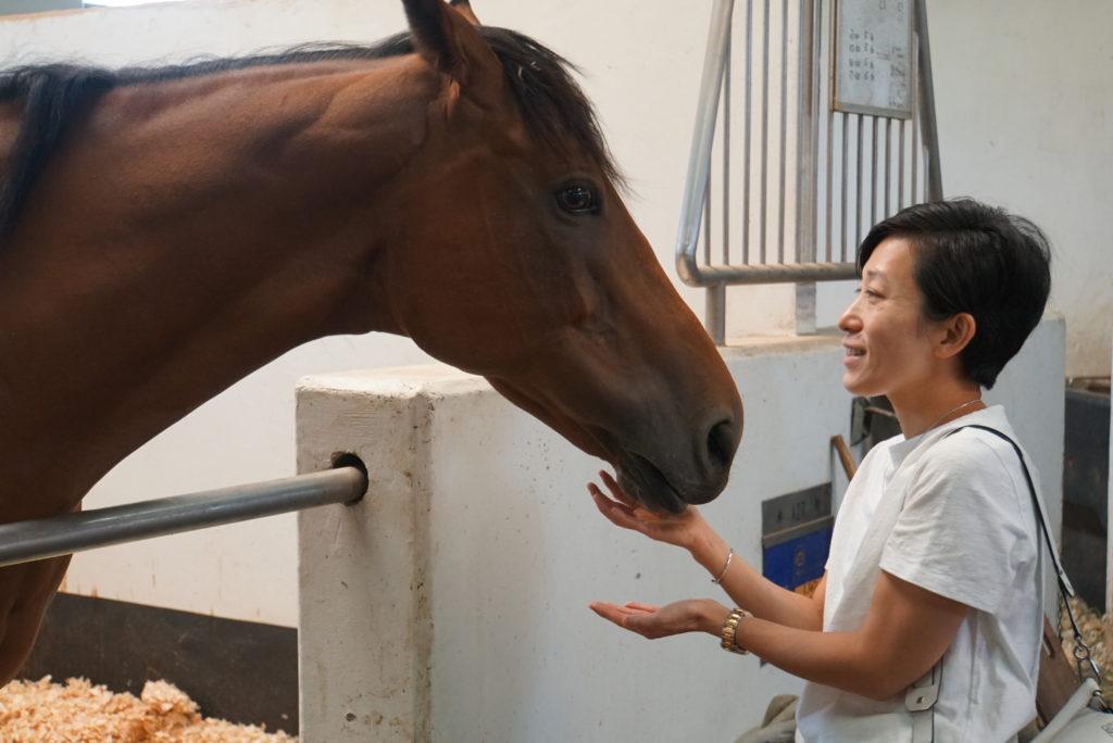 主鄧詠琪每天都會探望退役馬匹