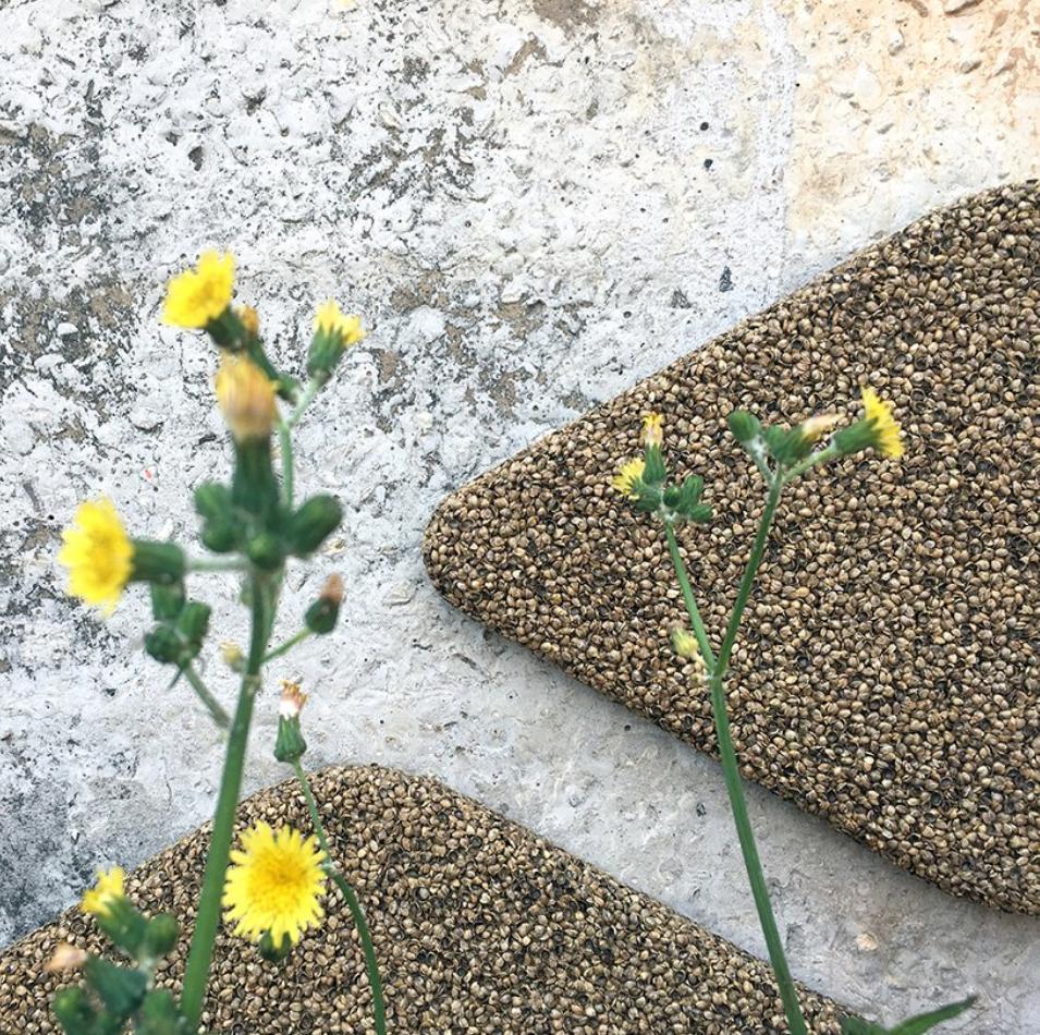 利用大麻籽殼製造的吸音板可以放置再戶外空間當作環保裝飾。