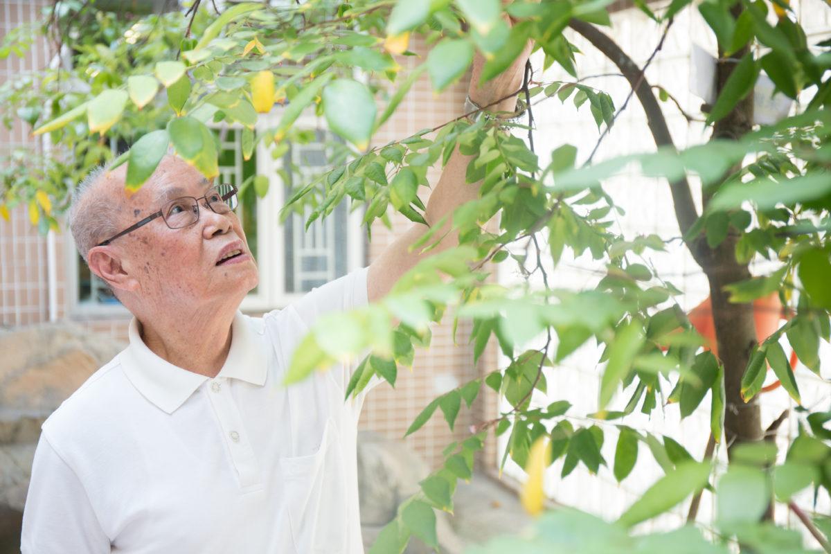 宏伯伯說,安老院的生活悶是一定的,但是也習慣了。還有很多其他樂趣,例如做園丁和看報紙。