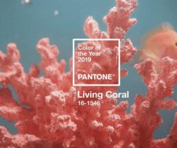 2019年年度顏色活珊瑚橘(Living Coral)溫暖柔和,予人一種充滿希望和活力的感覺。