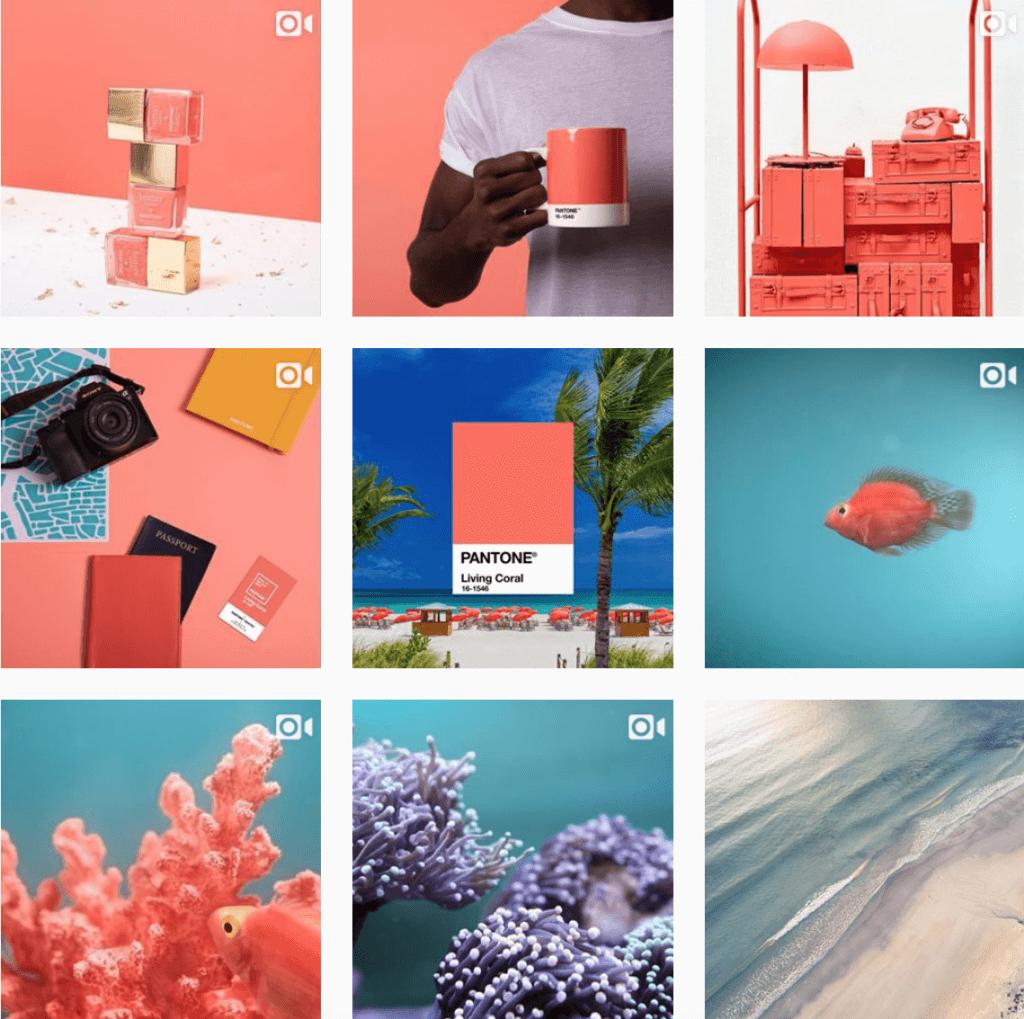 Pantone官方instagram已換上全新色彩,亦分享了關於海洋世界影片和圖片迎合主題。