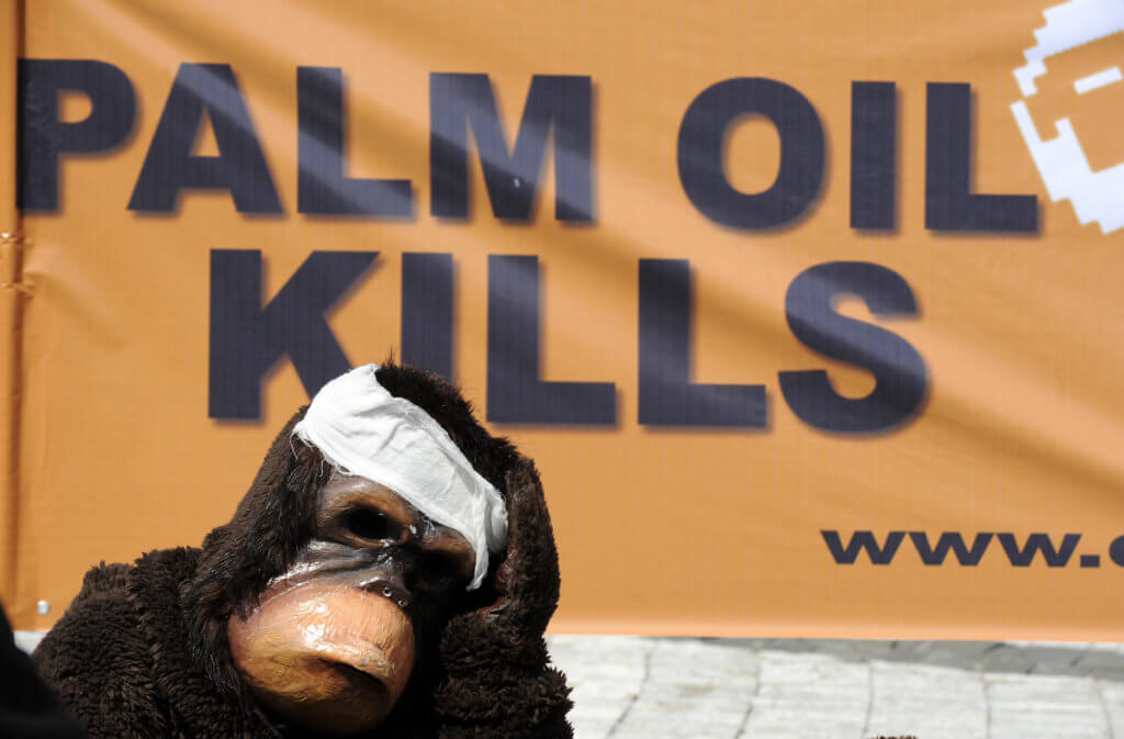 An activist of the Centre for Orangutan Protection (COP) dressed like an injured orangutan sits on the ground as others display a banner during a demonstration in Jakarta on May 8, 2008 to voice awareness to protect orangutans. One of the biggest populations of wild orangutans on Borneo will be extinct in three years without drastic measures to stop the expansion of palm oil plantations, conservationists said. More than 30,000 wild orangutans live in the forests of Indonesia's Central Kalimantan province, or more than half the entire orangutan population of Borneo island which is shared between Indonesia, Malaysia and Brunei. AFP PHOTO/Jewel SAMAD (Photo by Jewel SAMAD / AFP)