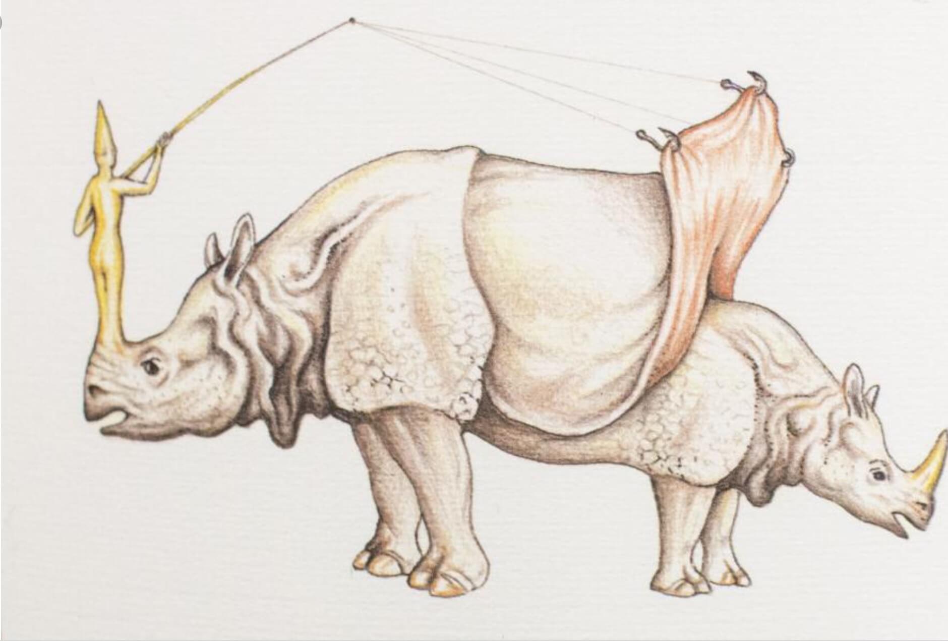 犀牛圖 野蠻與文明的混合