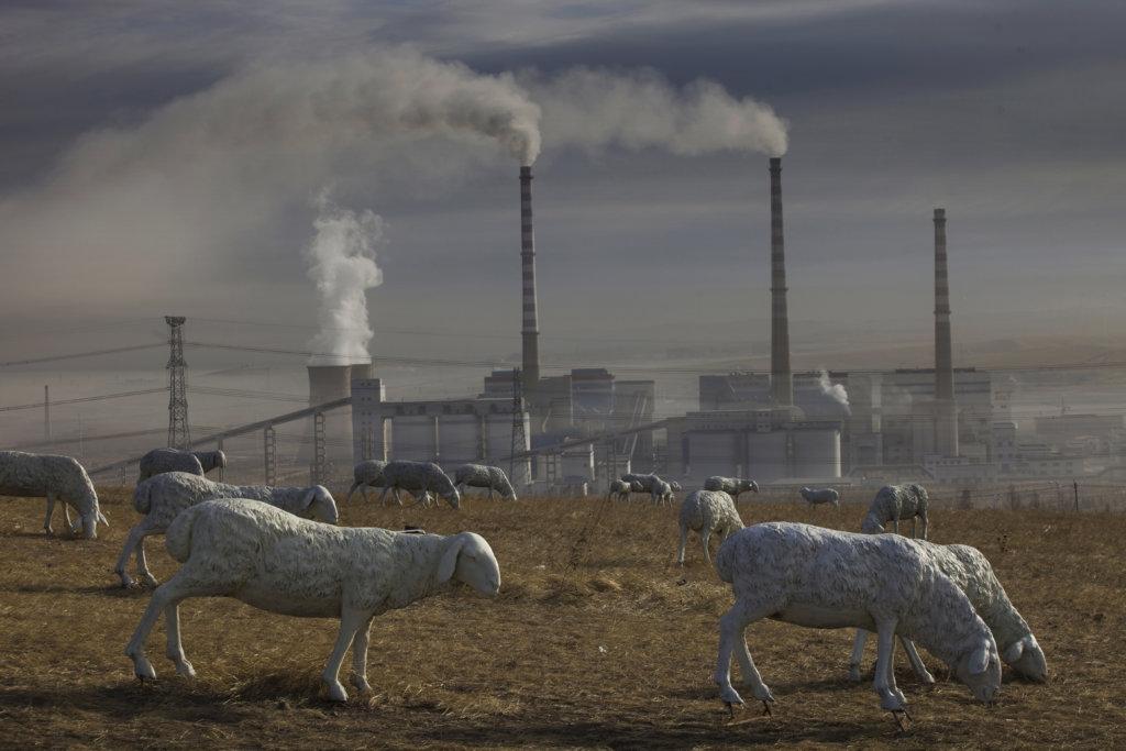 盧廣作品《被污染的風景》揭露蒙古大草原被工業和採礦業嚴重污染,大批牛羊死亡,政府以人造牛羊雕塑取而代之,來偽造「風吹草低見牛羊」的昔日美景。