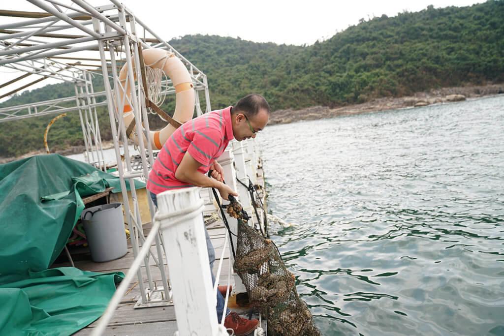 David想藉養珠推廣自然教育,故其魚排與生態教育及資源中心合作,舉行工作坊。