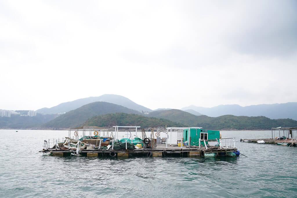 David認為香港東面水域水質比西面好,海面亦較平靜,故在西貢白沙灣對出建立魚排。