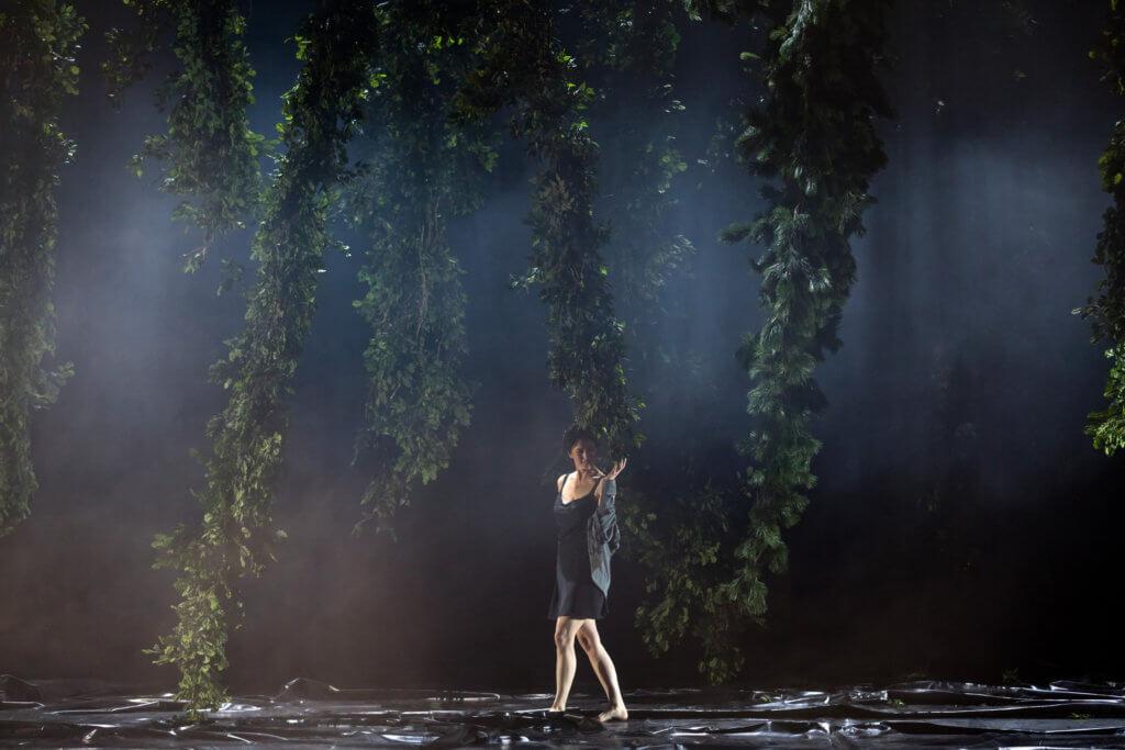 運用了倒吊的樹木佈置,今次《唐懷瑟》的第一幕以特殊的角度展示情慾。