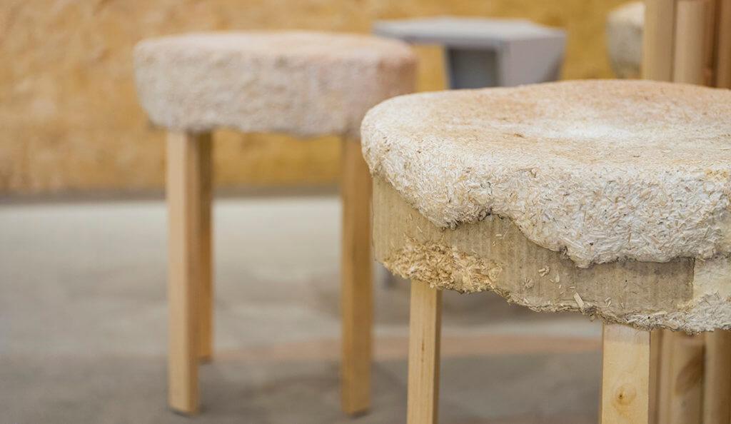 這凳面是由菇菌種出來,非常實淨。
