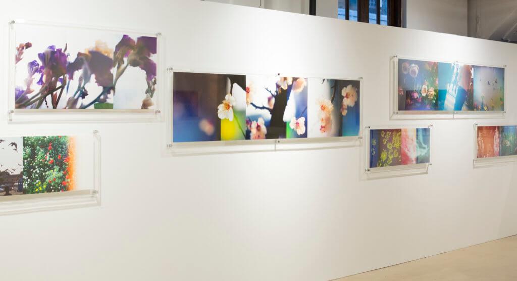 Keith愛花,展覽中有不少照片亦以花為題材。