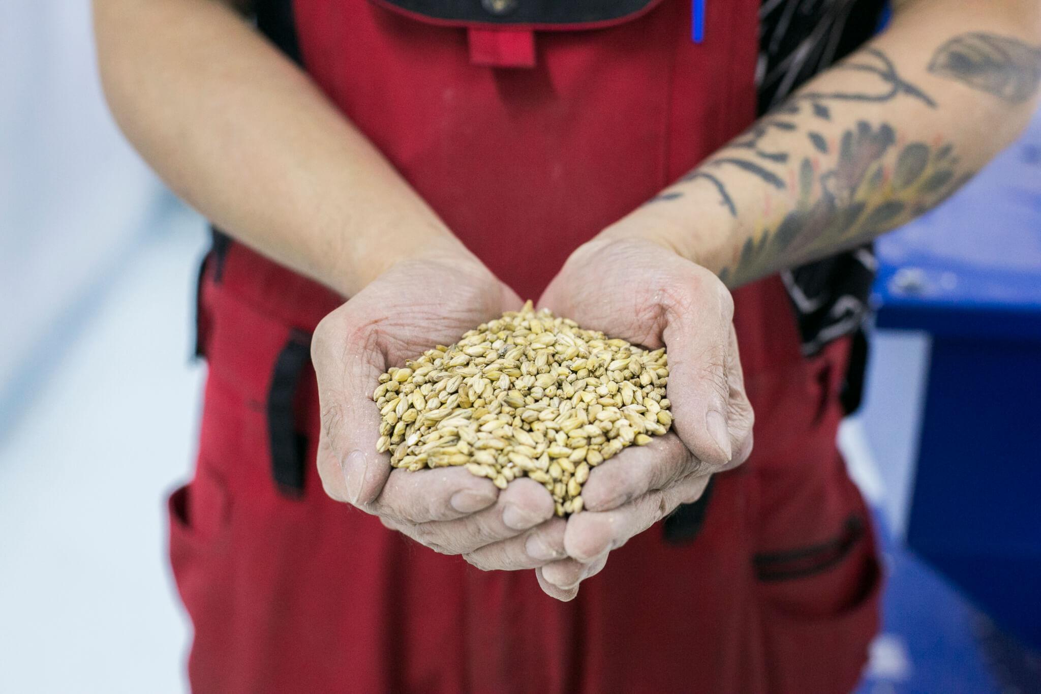 四款味道,不同麥芽的分量和配搭,或煙燻或烘烤去帶出不同的風味。