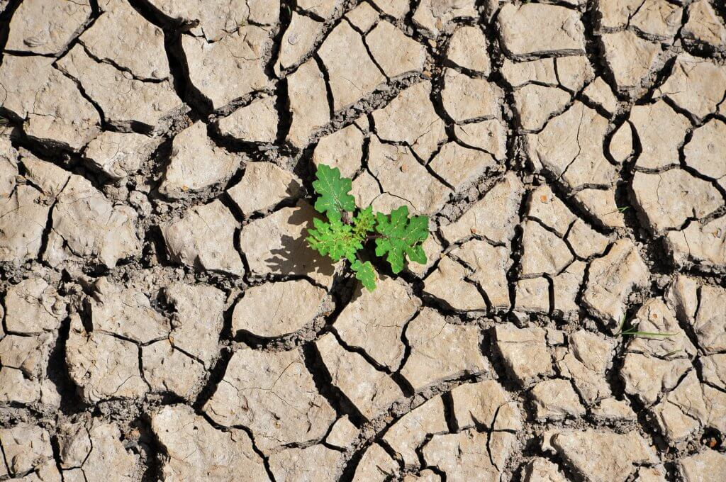 HONDURAS-EARTH-DAY-DROUGHT
