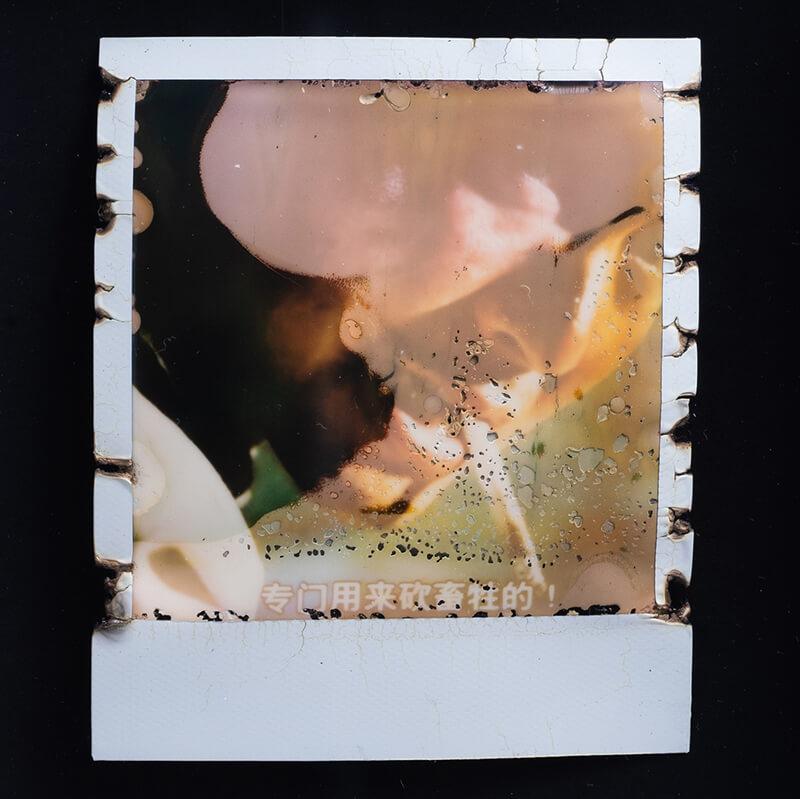 他亦「翻叮」電影截圖,包括《國產凌凌漆》 中「金槍人」指內地高官,Linus認為電影中周星馳說出 「專斬畜生」一句,引人想像。