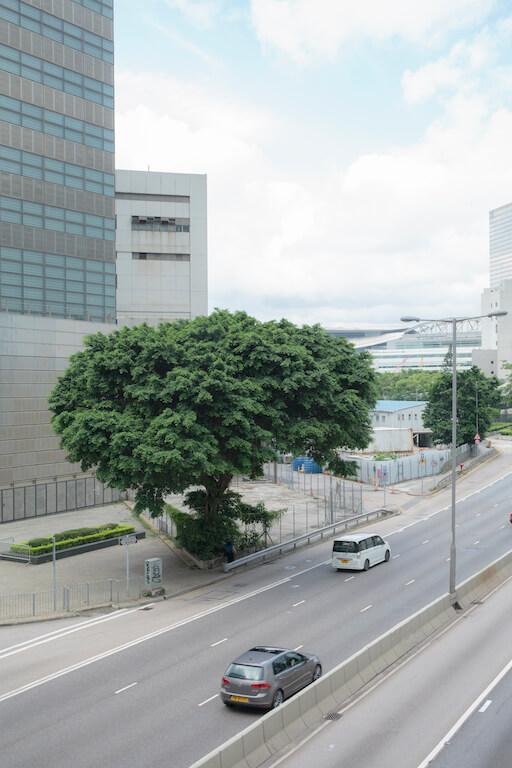 五年後的今日,街道再次佈滿人潮,紅十字會的總部已遷往西九龍。