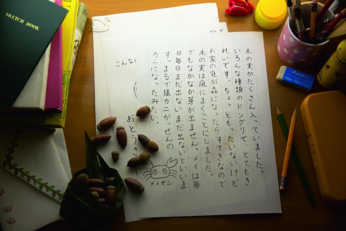 展覽內還一封模仿「父親」的信。信中以《龍貓》中的其中角色「メイ蟹」一直渴望家中四處都是橡子,如果家中的庭院變了森林便好了。「メイ蟹」每日都期望橡子發芽,可是每天都不長出來,好像在報復一樣。